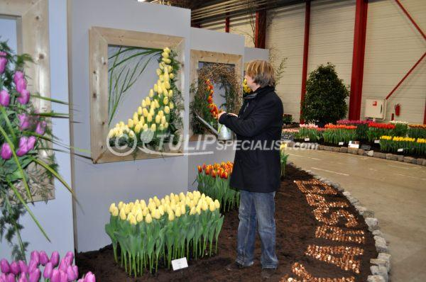 06-holland_food_and_flowers-flora-exhibition-tulips-tulpen (5).JPG