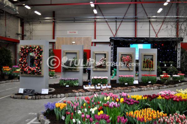 24-holland_food_and_flowers-flora-exhibition-tulips-tulpen (26).JPG